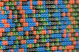 genome_sequencing